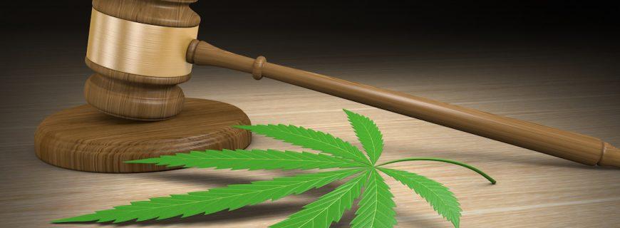 marijuana-legal-concept